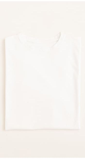 men's organic cotton tshirt in grey